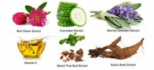 Vitamin E, Cucumbers, Red Clover Extract, Lavender Extract