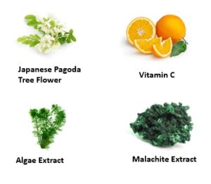 Active Ingredients (Japanese Pagoda Tree Flower, Vitamin C, Algae Extract, Malachite Extract)
